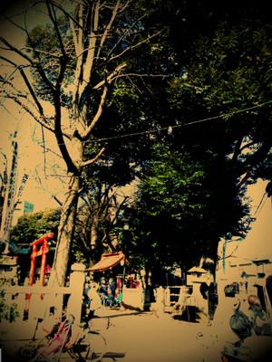 Lento_20120219095646